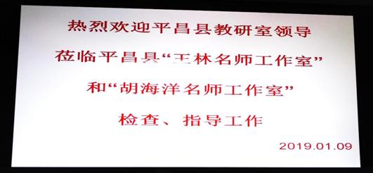 王林名师工作室简报 (第14期)